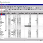 Excel Auto Filter and Freeze Panes, Work Smart!